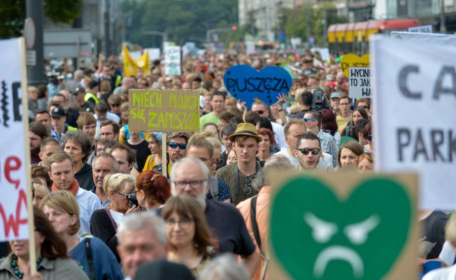 protest w obronie puszczy