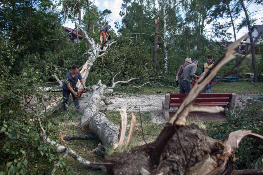 Połamane drzewa w Rytlu na Pomorzu