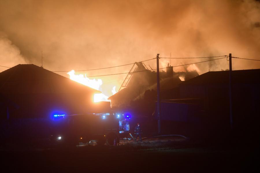 Akcja strażaków w Murowanej Goślinie
