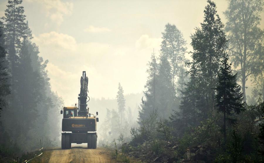 Pożary lasów w Szwecji
