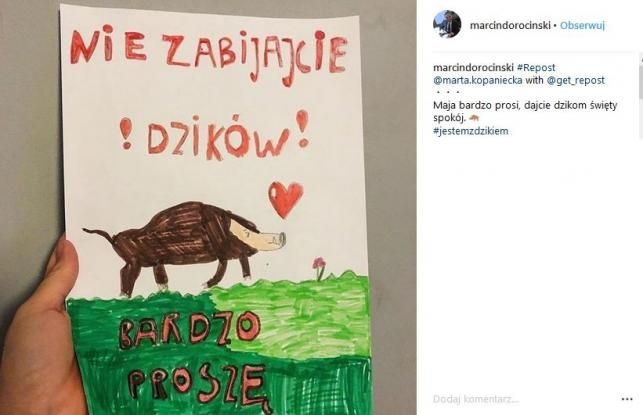 Marcin Dorociński w obronie dzików