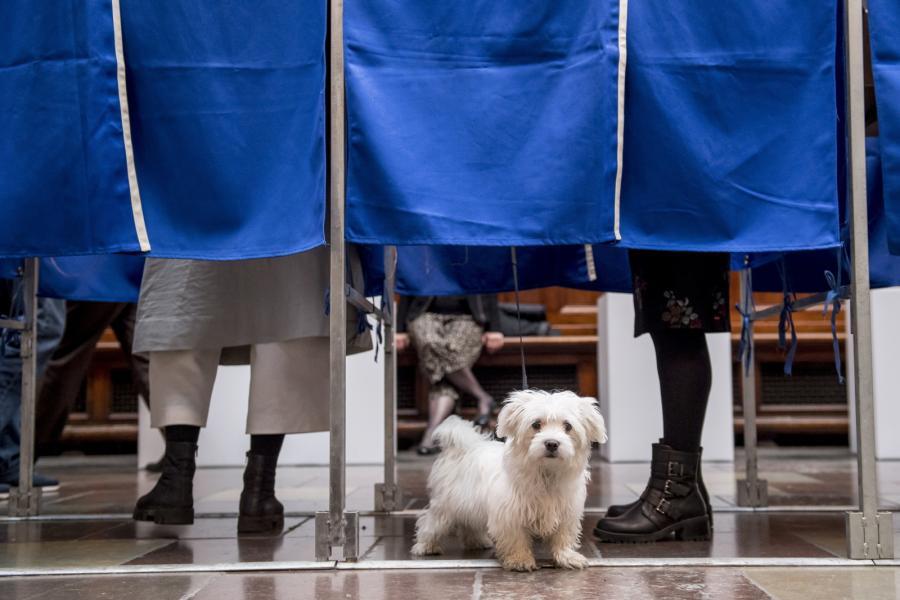 Głosowanie w Danii