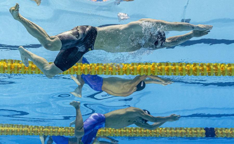 MŚ w pływaniu