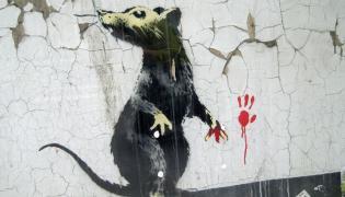 Szczur z Londynu. Jedno z dzieł Banksy'ego