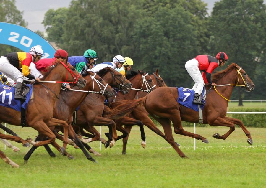 Totalizator Sportowy topi fortunę w końskim biznesie