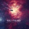 """3. Kali/Paluch – """"Milion dróg do śmierci"""""""