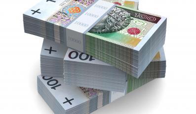 W tym roku przychody prywatyzacji mają sięgnąć 5 miliardów złotych