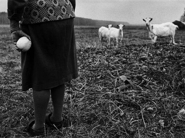"""""""Wschód"""" - okiem amerykańskiego fotografa Billa Crandalla"""