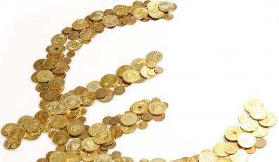 Euro już obrzydło Polakom