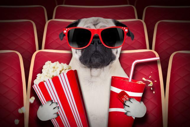 Na co do kina? Gorące premiery tygodnia