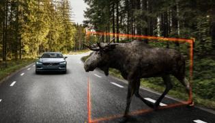 Nowe Volvo S90 jest wyposażone w system wykrywający zwierzęta